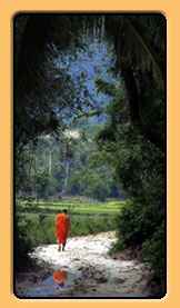 Monk walking near river