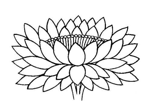 Buddhist Artwork Line Art Lotus Symbol 4